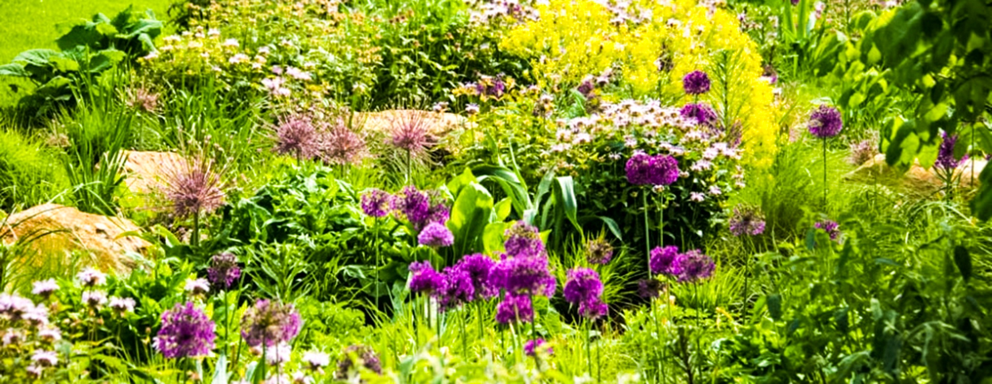 GardensAlive-QuoteBackground.jpg