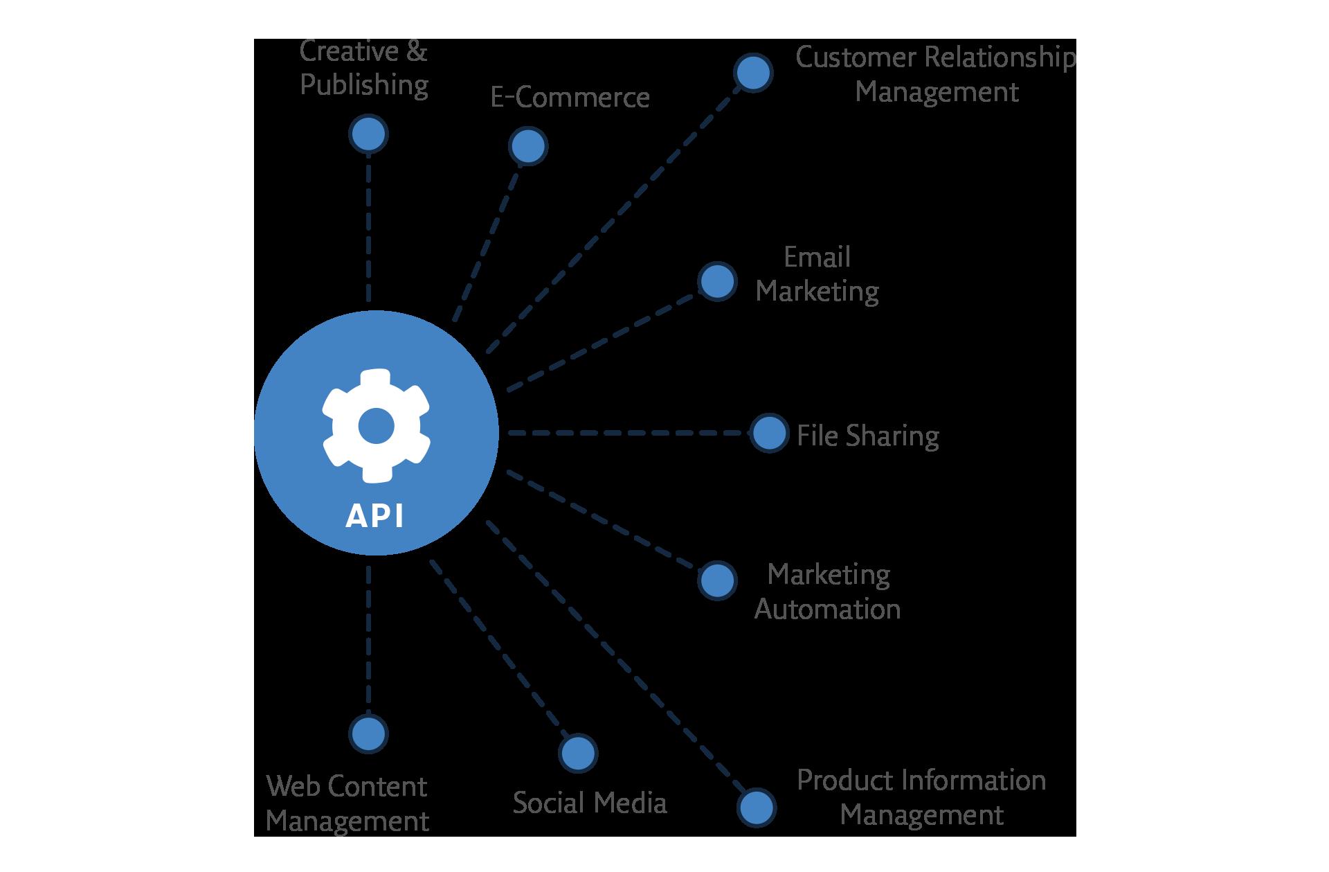 Portfolio Integration with Robus API
