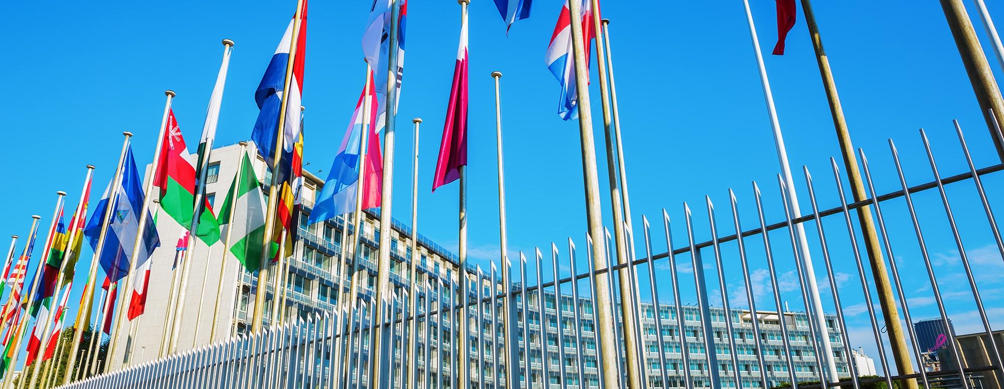UNESCO-QuoteBackground.jpg