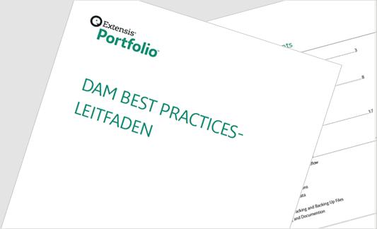 Ext-Web-Images-Documentation_DAMBestPractices-DE.png
