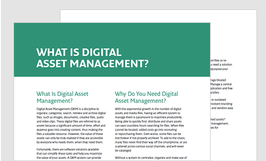 Do I Need Digital Asset Management?