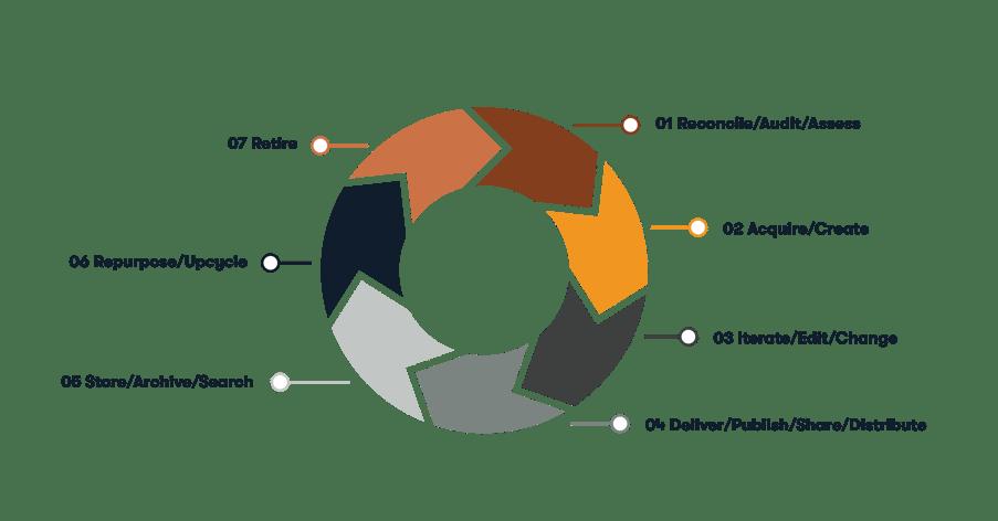 Lifecycle_Infographics-01-EN