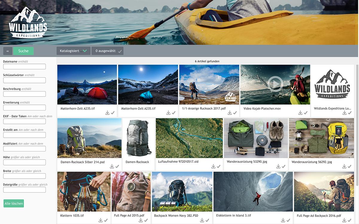 P2017 - Screenshot - NetPublish Web Portal  1200px - DE